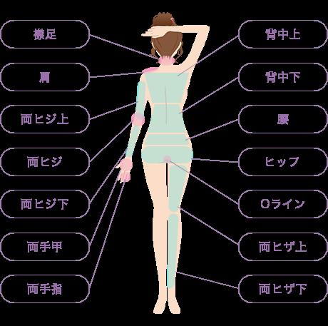 脱毛可能箇所:襟足、肩、背中上、背中下、腰、ヒップ、Oライン、両ヒザ上、両ヒザ下、両ヒジ上、両ヒジ、両ヒジ下、両手甲、両手指