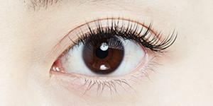 写真:片目70本のまつげエクステをつけた目